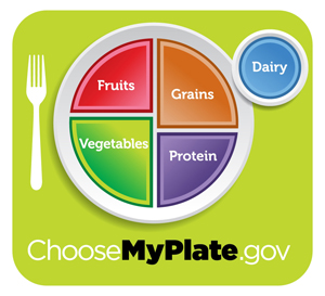Printable food pyramid, Healthy plate by USDA