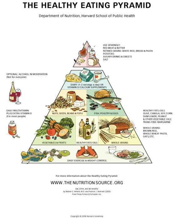 image regarding Printable Food Pyramid named Effortless Printable Meals Pyramid and the Fresh new Healthier Plate as a result of